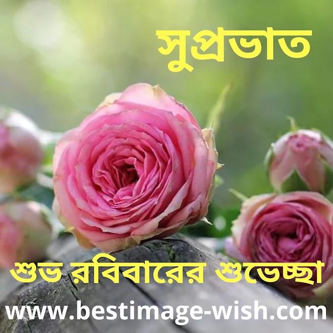 20 best Good morning Sunday images in bengali | শুভ সকাল | শুভ রবিবার | এসএমএস শুভেচ্ছা সুপ্রভাত মেসেজ লেখা ছবি