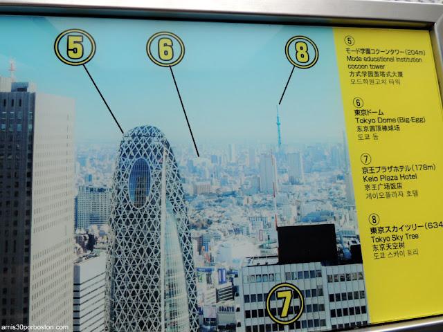 Cartel Informativo del Observatorio del Edificio del Gobierno Metropolitano,  Tochō