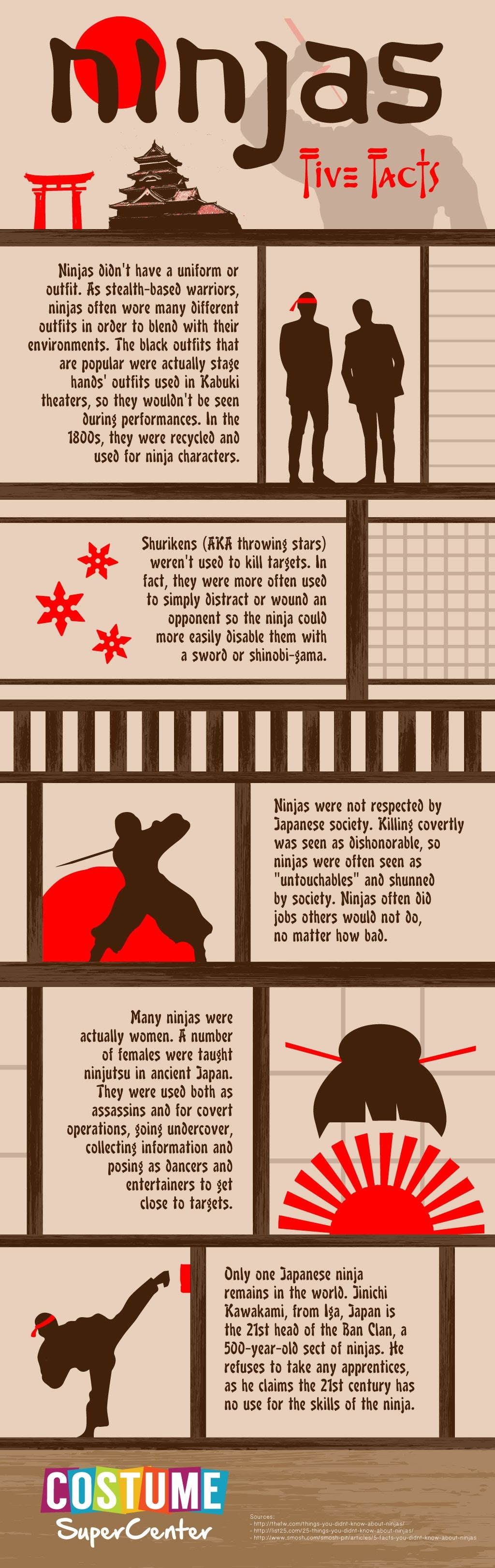 Ninjas Five Facts #Infographic