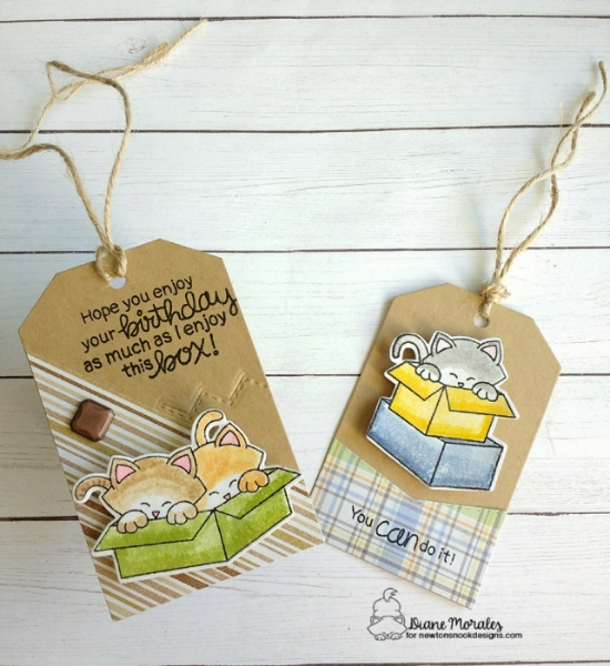 You can do it by Diane features Newton Loves Boxes and Fancy Edges Tag by Newton's Nook Designs; #newtonsnook