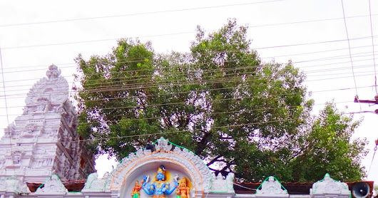 Vemulawada Temple  |  Sri Raja Rajeshwara Swamy Temple Guide and Information