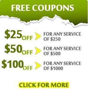 http://www.plumbersgrapevinetx.com/waste-disposal-unit/discount-plumbing-coupon.jpg
