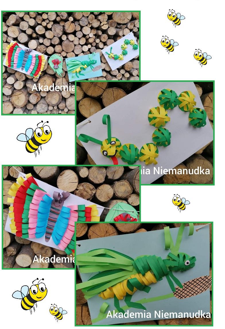 prace plastyczne z pasków papieru, gąsienica, motyl, gąsienica z rolki, nakrętki po napojach