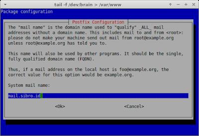 Masukkan nama domain untuk mail yang telah dibuat di dns-server tadi