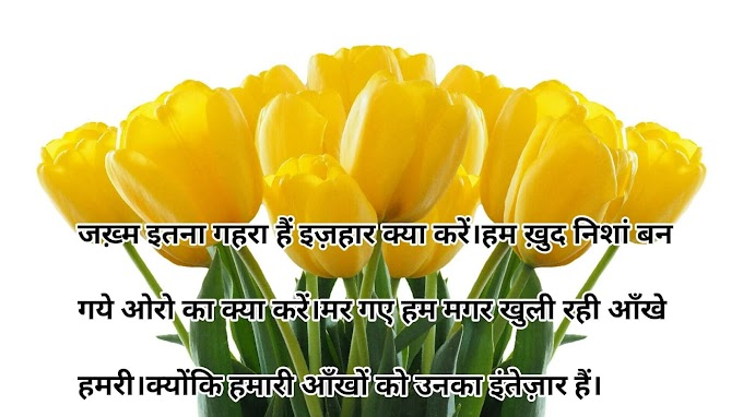 Shayari  Dil love shayari  Status Love