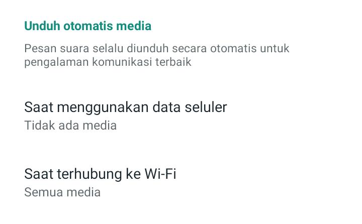 Mematikan WhatsApp yang Download file Sendiri