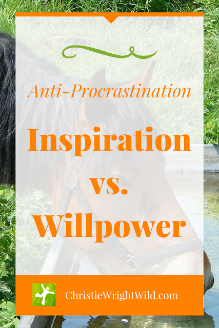 How to fight procrastination || inspiration vs. willpower | You can lead a horse to water, but you can't make him drink | writing tips | running advice