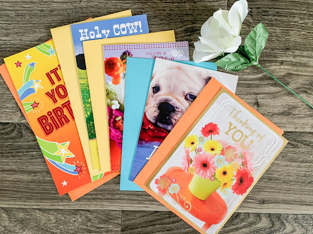 Celebrating One Year of Expressions from Hallmark Cards at Dollar Tree