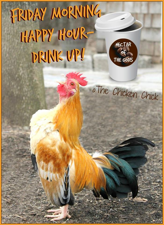 Friday morning happy hour- drink up!