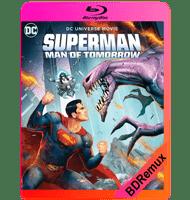 SUPERMAN: HOMBRE DEL MAÑANA (2020) BDREMUX 1080P MKV ESPAÑOL LATINO