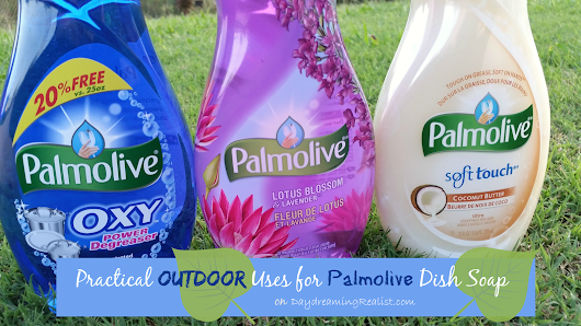 3 Safety Reasons to Clean Outdoor Toys and Furniture #Palmolive25Ways #cbias