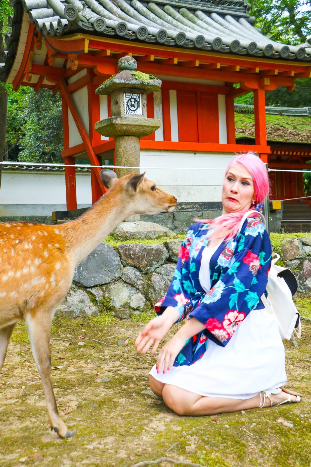 Travel Nara Japan