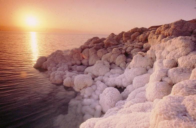 Vivacity Dead Sea Products