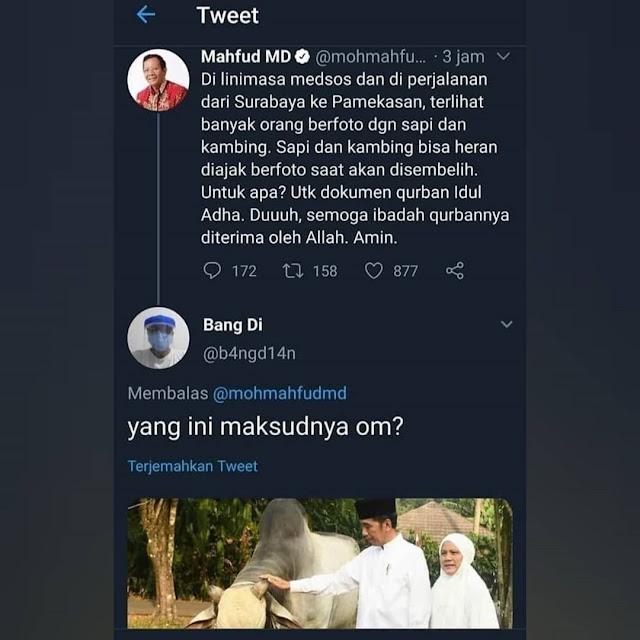 Komentari Warga Yang Upload Foto Hewan Qurban, Mahfud MD Dibalas Foto Jokowi Elus Sapi