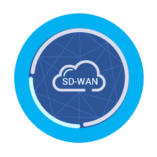 Cisco Study Materials, Cisco Certification, Cisco Tutorial and Material, Cisco Online Exam, Cisco SD-WAN