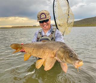 Mirror Carp, Carp on the Fly, Fly fishing for Carp, Fly Fishing