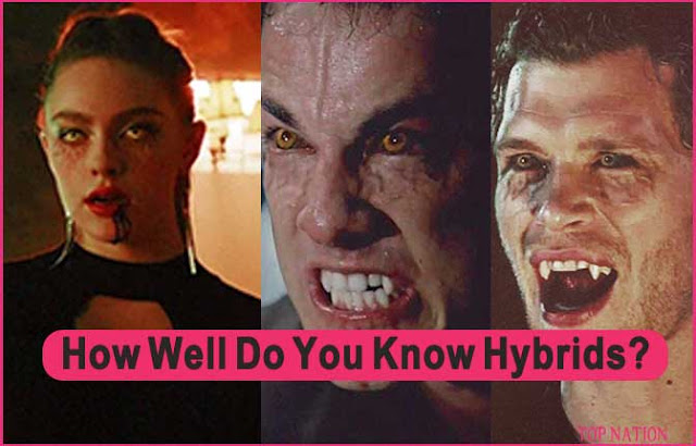 How Well Do You Know The Hybrids From TVD Universe?