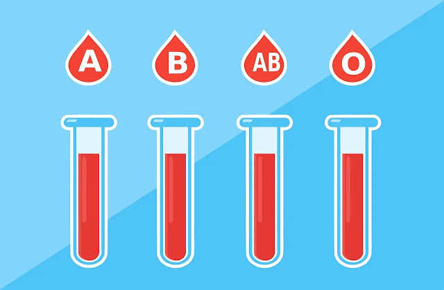 Figure 1. ¿Qué es la Anemia? - sybcodex.com