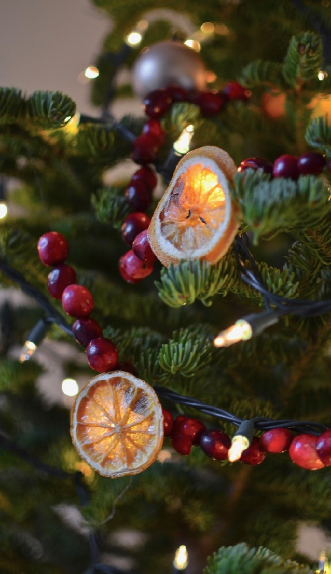 Dried Orange and Cranberry Garland