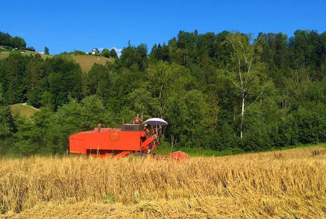 Chez Bio Suisse: 25 Jahre Bio Zug