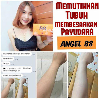 Ver 88 Angel Suplemen Pemutih Kulit Permanen Ori Thailand