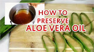 How to Preserve Aloe Vera Oil for Hair Growth, Dandruff and Skin | DiscoveringNatural