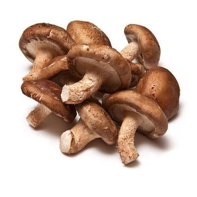 Medicinal mushroom farming in Pimpri-Chinchwad