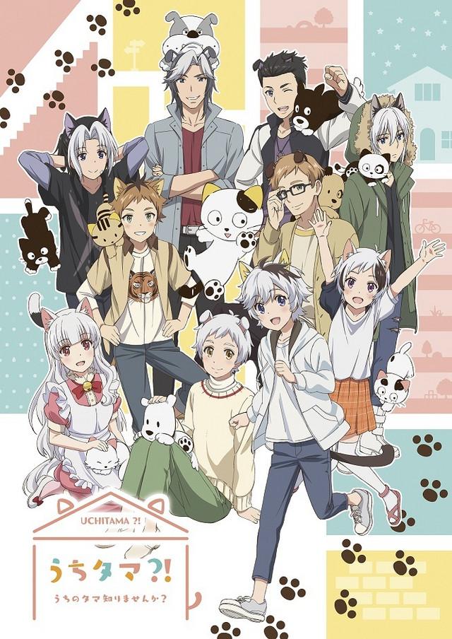 Anime Uchi Tama?! ~Uchi no Tama Shirimasen ka?~ en una nueva imagen promocional
