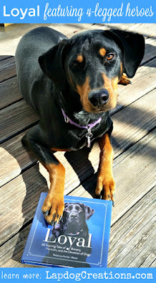 rescued doberman mix with Loyal book