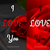 143 Beautiful I Love You Images with Roses for Love