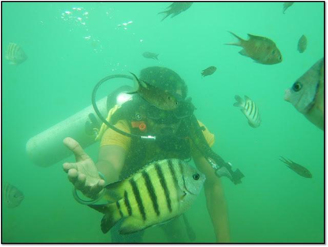 Goa, scuba diving