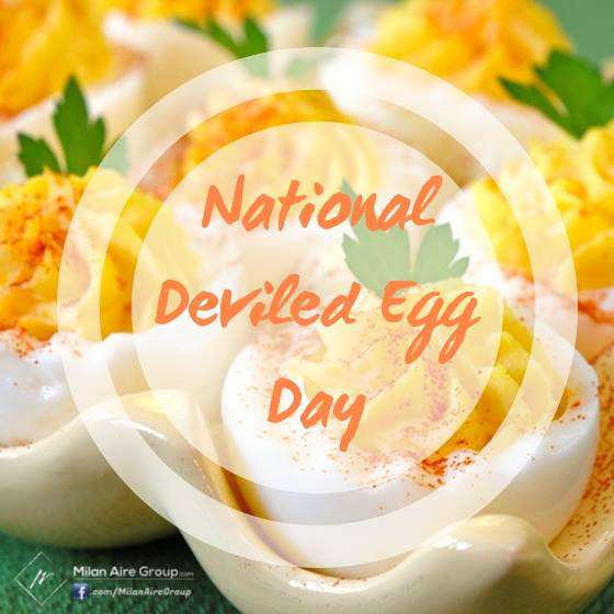 National Deviled Egg Day Wishes for Whatsapp