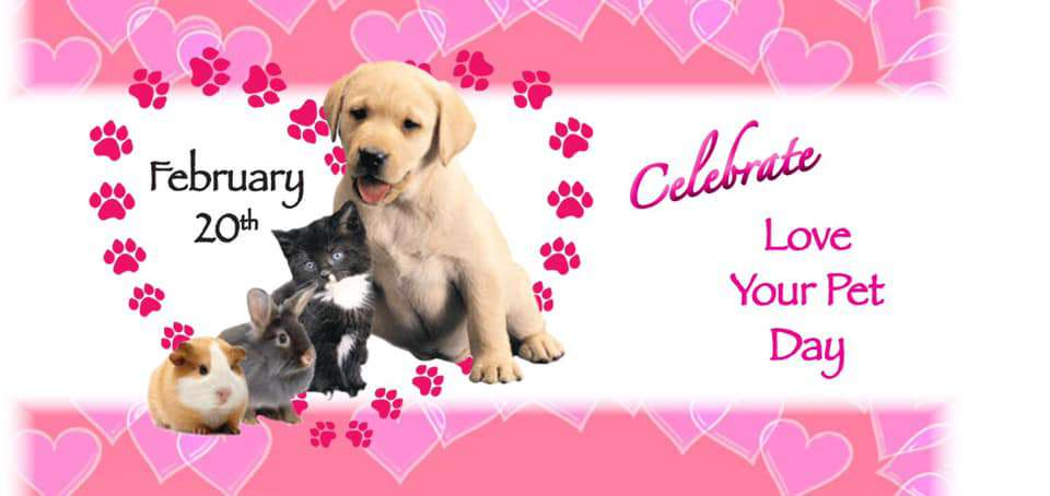 National Love Your Pet Day Wishes Lovely Pics