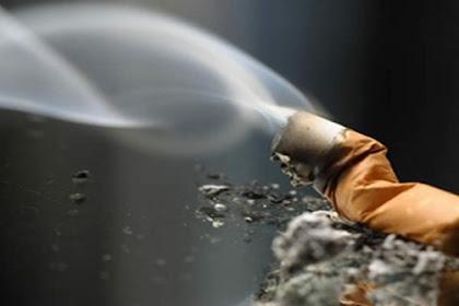 Keinginan Sekolah dan Panasnya Putung Rokok | Cerita Sedih