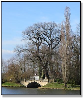 Brücke im Wörlitzer Park