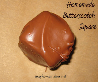 Homemade butterscotch squares - suzyhomemaker.net