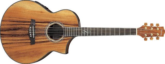 Harga Gitar Ibanez EW50, Review Dan Spesifikasinya