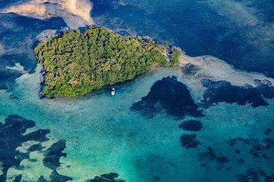 Vue arienne d'une île avec mangrove au grand cul de sac marin en Guadeloupe. Ile entouré de palétuviers.