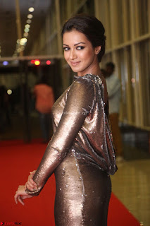 Actress Catherine Tresa in Golden Skin Tight Backless Gown at Gautam Nanda music launchi ~ Exclusive Celebrities Galleries 057.JPG