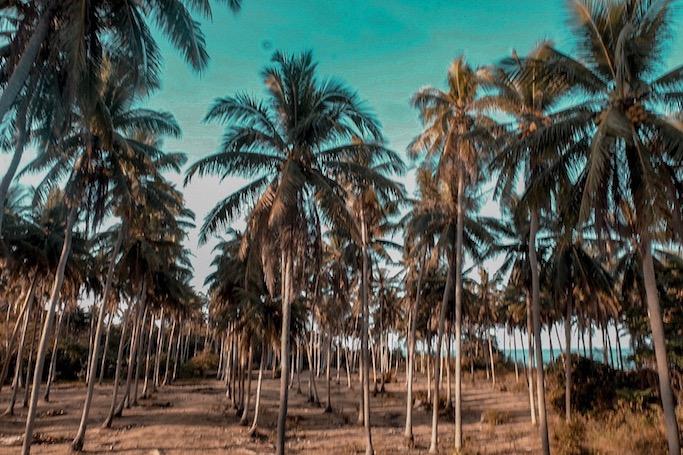 marinduque tourist spots