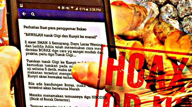 Isu Tentang Broadcast Tusuk Gigi Kunyit Pendeteksi Borax yang Ditemukan Pelajar SMA 3 Semarang
