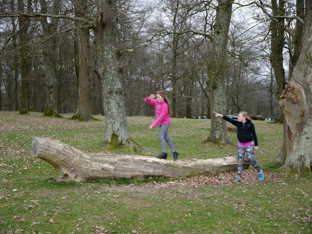 Girls playing on a large log
