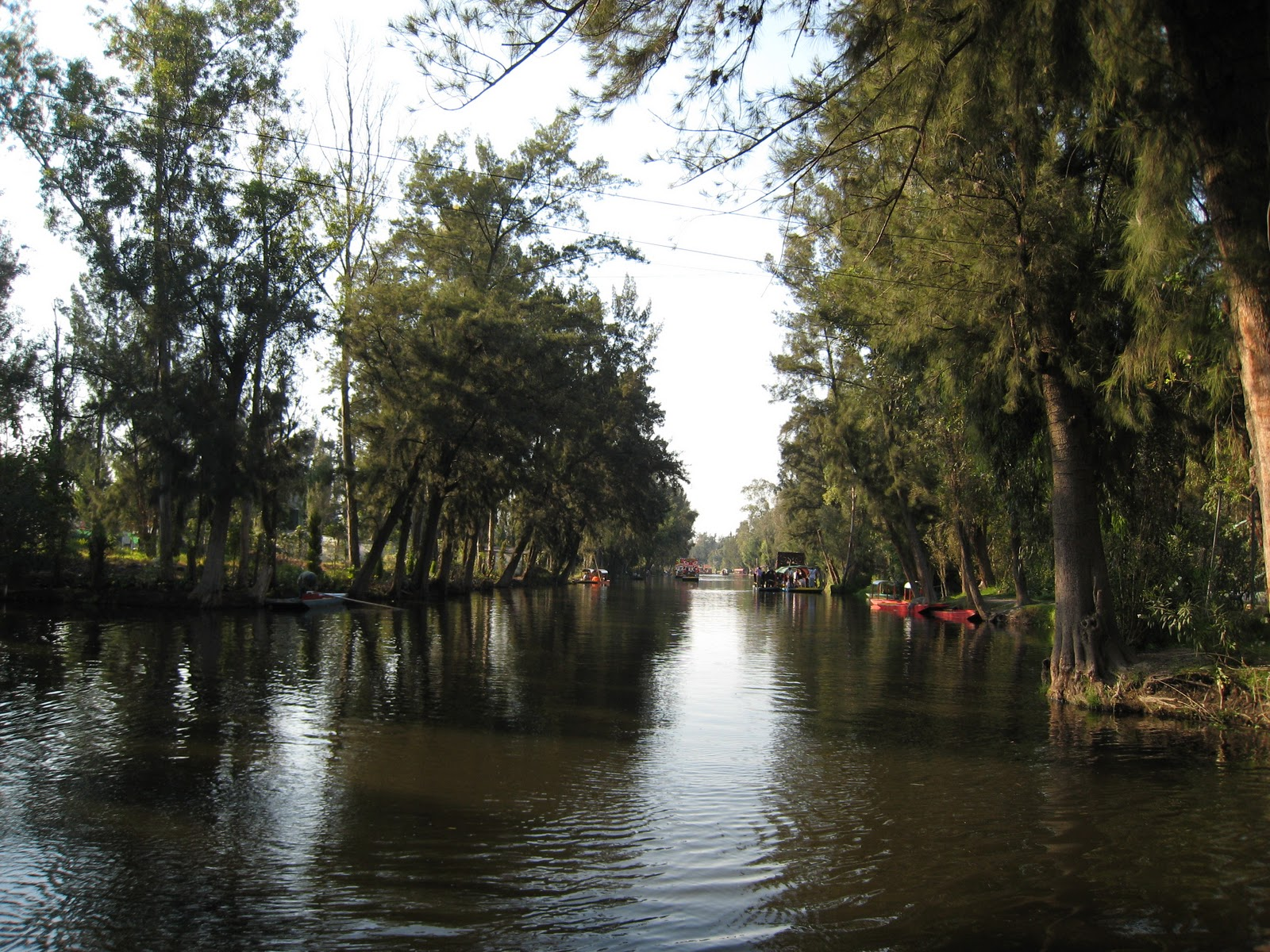 chinampas xochimilco - photo #1