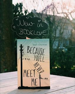 because-youll-never-meet-me-book
