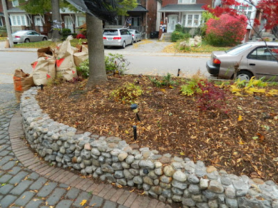 Fall Cleanup Bedford Park Front Yard After by Paul Jung Gardening Services--a Toronto Organic Gardening Company