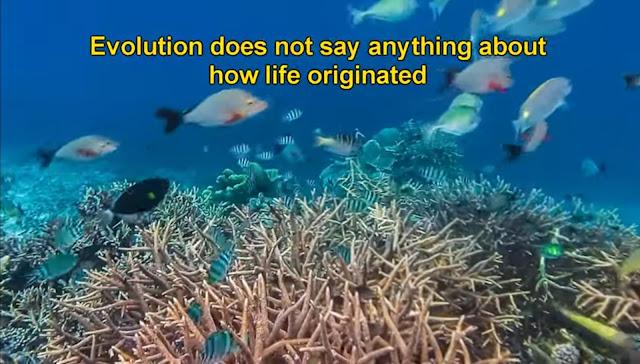 How did life begin? Abiogenesis Origin of life.