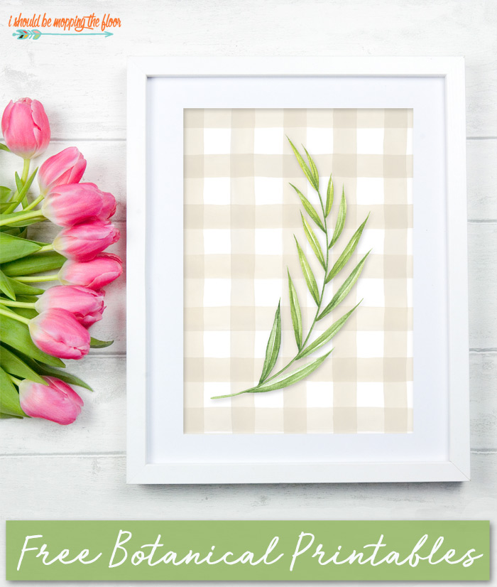 Free Botanical Printables