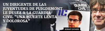 Bernat Catasús, Puigdemont