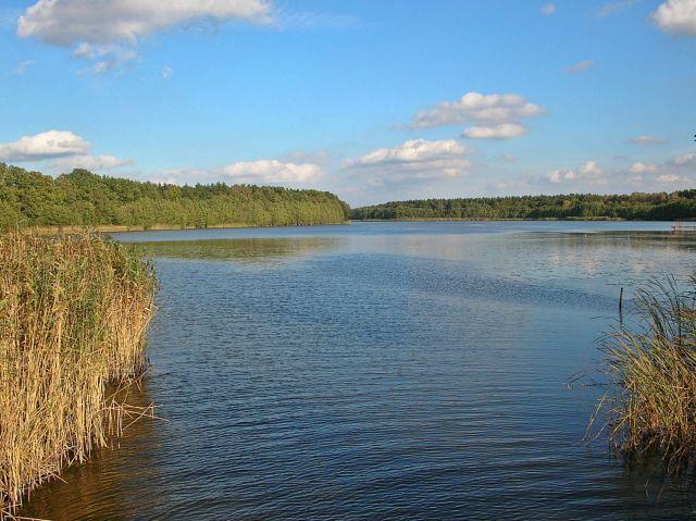 jeziora, Nowe Kramsko, lubuskie jeziora