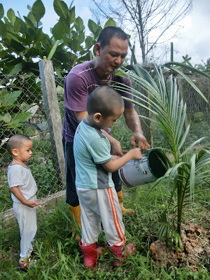 Ajar anak berkebun tanam pokok kelapa mudah dan cepat